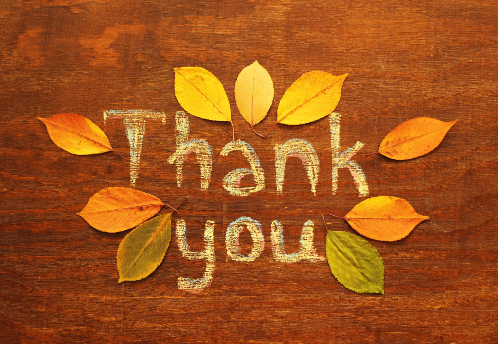 thank you, autumn leaves, thanksgiving card